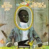 Plays Best Of Scott Joplin & Other Rag Classics by Max Morath