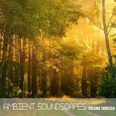 Ambient SoundScapes, Vol. 13 by Terry Oldfield