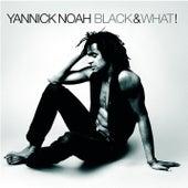 Black & What ! de Yannick Noah
