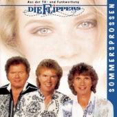 Sommersprossen von Die Flippers