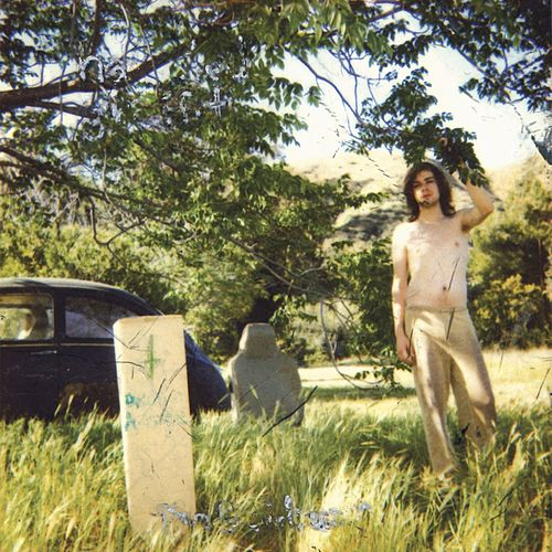 The Doldrums by Ariel Pink's Haunted Graffiti