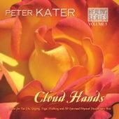 Cloud Hands - Healing Series Volume 5 by Peter Kater