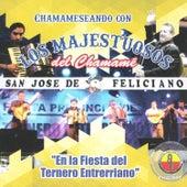 En la Fiesta del Ternero Entrerriano de Los Majestuosos Del Chamamé