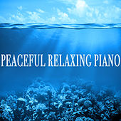 Peaceful Relaxing Piano de Various Artists