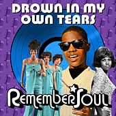 Drown in My Own Tears - Remember When de Various Artists