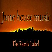 June Housemusic (Organic Deephouse Vibrant Techhouse Inspiring Proghouse Music Compilation) de Various Artists