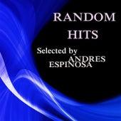Random Hits von Andres Espinosa