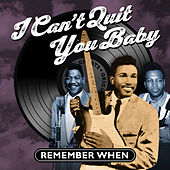 I Can't Quit You Baby - Remember When de Various Artists