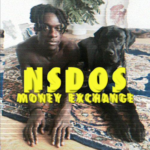 Money Exchange by Nsdos
