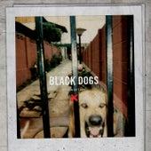 Black Dogs de Boys Night Out