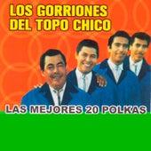 Las Mejores 20 Polkas de Los Gorriones Del Topo Chico