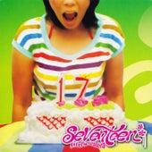 Sweet Seventeen by Seventeen