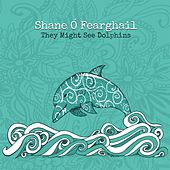 They Might See Dolphins von Shane Ó Fearghail