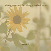 Relaxing Music & The Calming Sounds Of Nature - Volume 2 von Music For Meditation