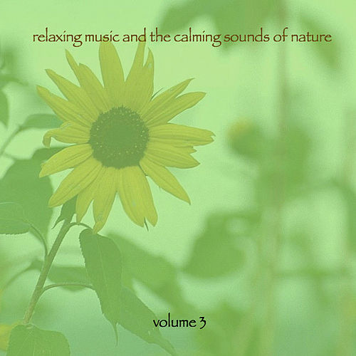 Relaxing Music & The Calming Sounds Of Nature - Volume 3 by Music For Meditation
