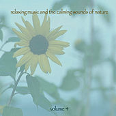 Relaxing Music & The Calming Sounds Of Nature - Volume 4 von Music For Meditation