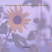 Relaxing Music & The Calming Sounds Of Nature - Volume 6 von Music For Meditation