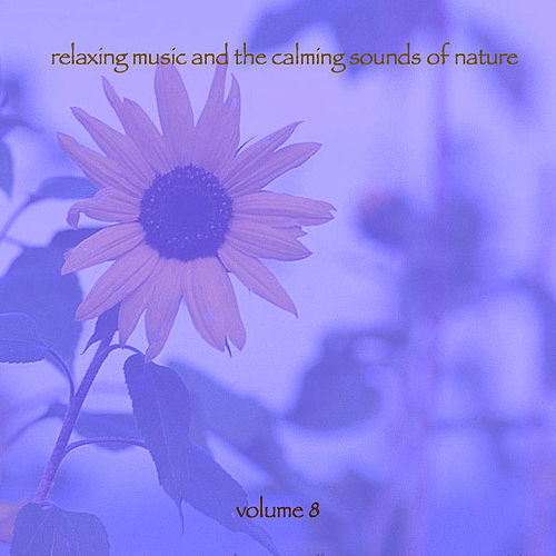 Relaxing Music & The Calming Sounds Of Nature - Volume 8 by Music For Meditation