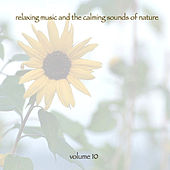 Relaxing Music & The Calming Sounds Of Nature - Volume 10 von Music For Meditation