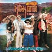 Vamonos Pa'l Rio de Los Pikadientes De Caborca