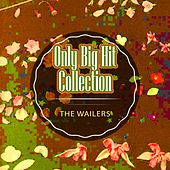 Only Big Hit Collection by The Wailers