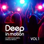 Deep in Motion, (20 Deep-House Beats) Vol. 1 de Various Artists