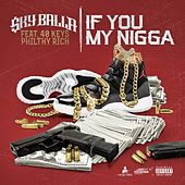 If You My Nigga (feat. Philthy Rich & 40Keys) - Single von Sky Balla
