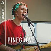 Pinegrove on Audiotree Live de Pinegrove