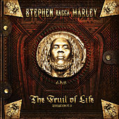 Scars On My Feet by Stephen Marley