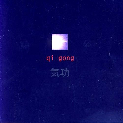 Qi Gong by Qi Gong