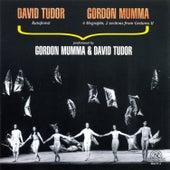 David Tudor And Gordon Mumma by Various Artists