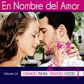 Grandes Temas Grandes Voces Vol. 14 by Various Artists