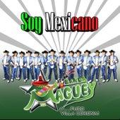 Soy Mexicano de Banda Maguey