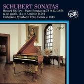 Schubert: Sonatas on Fritz Viennese Fortepiano by Howard Shelley