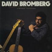 Sideman Serenade by David Bromberg