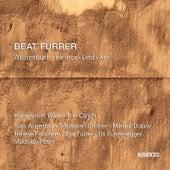 Beat Furrer: Wüstenbuch, Ira-Arca, Lied & Aer by Various Artists