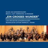 Bruch, Liszt, Herrmann, Schroeder: