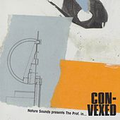Convexed von Various Artists