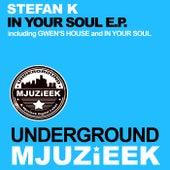 In Your Soul - Single by Stefan K