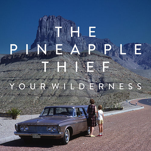 Your Wilderness by The Pineapple Thief