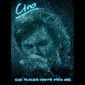 Qué Placer Verte Otra Vez (Ferro 2014 en Vivo) de Ciro Y Los Persas