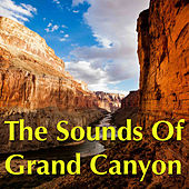 The Sounds Of Grand Canyon by Various Artists