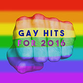 Gay Hits for 2016 by Various Artists