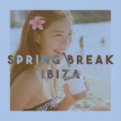 Spring Break Ibiza by Various Artists