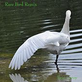Rare Bird Remix de Eric Leroy