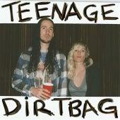 Teenage Dirtbag by Walk off the Earth