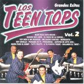 Los Teen Tops  Grandes Exitos Vol. 2 by Los Teen Tops