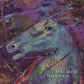 Wilder Horses by Jonae'