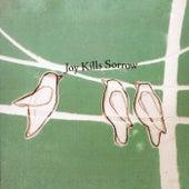 Joy Kills Sorrow by Joy Kills Sorrow