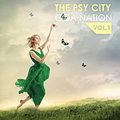 The Psy City Goa Nation, Vol. 1 de Various Artists